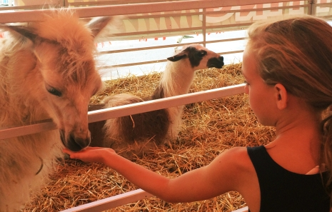 A young girl makes a new friend at the Ohio State Fair.