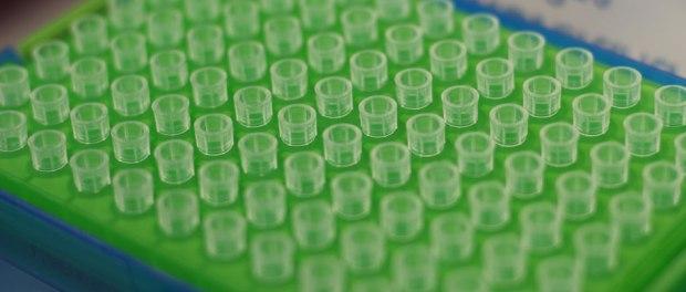 cell screening